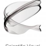 Scientific Visual